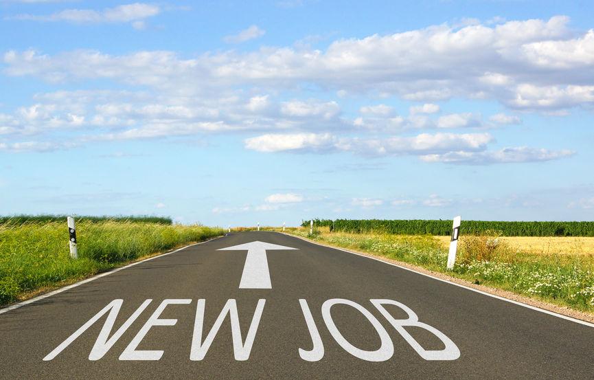 opportunités d'emploi pour de jeunes diplômés